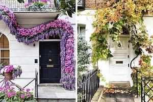 Ngỡ ngàng với 50 cánh cửa mặt tiền đẹp nhất London của nhiếp ảnh gia