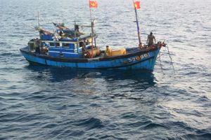 Bình Định: Cứu hai ngư dân nước ngoài gặp nạn trên biển