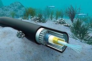 Cáp quang biển Liên Á sẽ được sửa xong vào ngày 21-1
