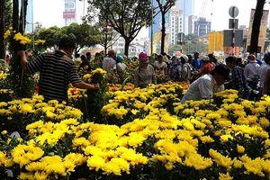 Hà Nội tổ chức 64 chợ hoa xuân phục vụ người dân