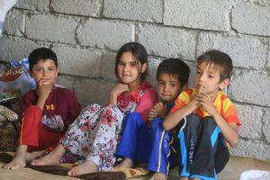 Yemen, nơi trường học thành chỗ ở của người tị nạn