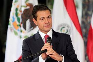 Cựu Tổng thống Mexico bị cáo buộc nhận hối lộ 100 triệu USD từ trùm ma túy khét tiếng