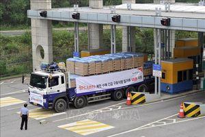 Hàn Quốc 'bật đèn xanh' cho nhóm nhân đạo cung cấp thiết bị y tế cho Triều Tiên