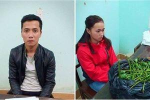 Mua bán trên Facebook, vợ chồng 9x kiếm lời 500.000 đồng/kg quả anh túc
