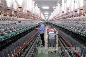 Bộ Tài chính cắt giảm chi phí cho doanh nghiệp