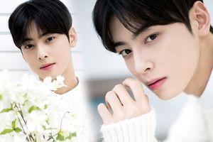 Dispatch tung ảnh mới của Cha Eun Woo (ASTRO), K-net: 'Giống Park Bo Gum, con trai nhìn cậu ấy còn rung động'