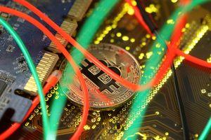 Thị trường tiền ảo rơi vào cơn bão giảm giá