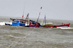 Tàu cá Bình Định cùng 11 thuyền viên gặp nạn trong vùng gió giật mạnh