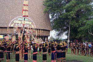 Cơ hội chiêm ngưỡng 'báu vật đại ngàn' tại Hà Nội