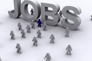Nhu cầu tuyển dụng nhân sự cho nông nghiệp tăng vọt