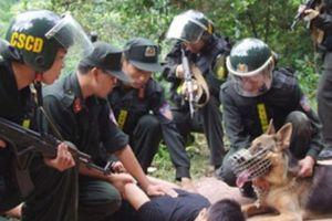 Công an tỉnh Thanh Hóa bắt 672 đối tượng
