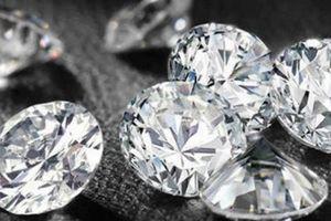 Mất 24kg kim cương chỉ vì quá tin tưởng tên trộm