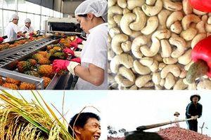 Trao đổi thương mại giữa Việt Nam và UAE đạt khoảng 10 tỷ USD