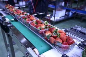 Bài 1: Nhân loại cần thay đổi chế độ ăn uống và sản xuất thực phẩm