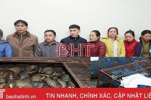Bộ Công an phá vụ nuôi nhốt, buôn bán tê tê cực lớn ở Hà Tĩnh