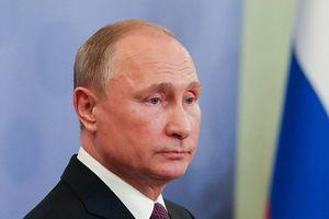 Tổng thống Nga Vladimir Putin bắt đầu thăm chính thức Serbia