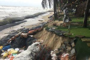 Quảng Nam xin Chính phủ hỗ trợ 700 tỷ đồng cứu biển Cửa Đại