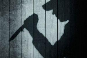 Đồng Nai: Bắt nghi phạm đâm chết 1 công an xã