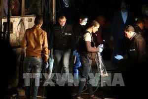 Ba nạn nhân trong vụ đánh bom ở Ai Cập dự kiến được xuất viện trước Tết Nguyên đán