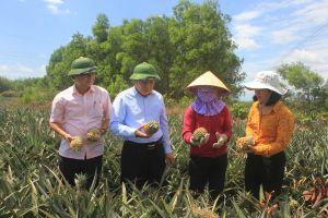 Quảng Trị: Sẽ có huyện đạt chuẩn nông thôn mới vào năm 2020
