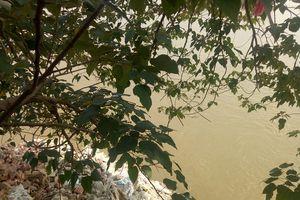 Phế thải 'bức tử' sông Hồng: Có hay không việc buông lỏng quản lý của đơn vị Cảng Hà Nội?
