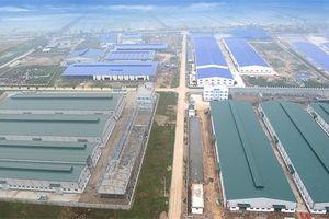 Hải Dương: Hàng loạt sai phạm về đất đai ở Cụm công nghiệp Lương Điền