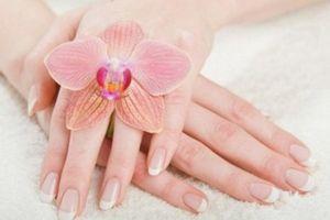 Bí quyết chăm sóc đôi tay mềm mại trong suốt mùa lạnh