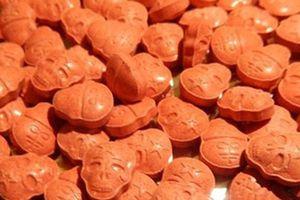 Ma túy hình sọ người được chuyển phát nhanh từ Hà Lan về Việt Nam