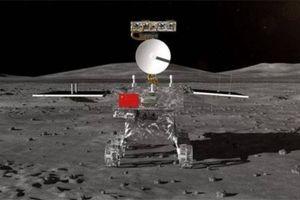 Trung Quốc chuẩn bị gì để có thể trồng hoa trên Mặt trăng?