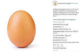 Bức ảnh quả trứng có điều gì lạ khi lập kỷ lục 'bức ảnh được nhiều lượt thích nhất trên Instagram'?