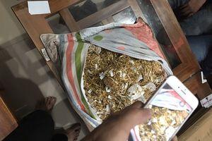 Vụ đem bán 230 lượng vàng ở Quảng Nam: '7 năm làm thuê, mỗi ngày trộm 1 ít vàng mang đi cất giấu'