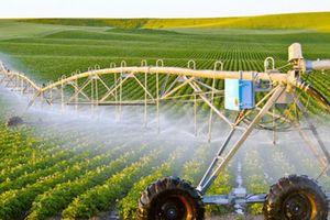 Việt Nam tận dụng nông nghiệp thông minh thúc đẩy phát triển bền vững