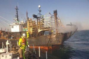 Cháy tàu cá tại Hàn Quốc, một người Việt Nam thiệt mạng