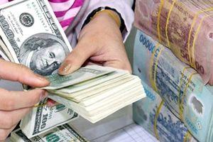 Tỷ giá ngoại tệ ngày 18/1: Ngân hàng Nhà nước tiếp tục tăng giá USD