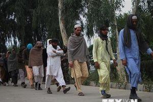 Taliban bác tin đàm phán với Đặc phái viên Mỹ tại Pakistan