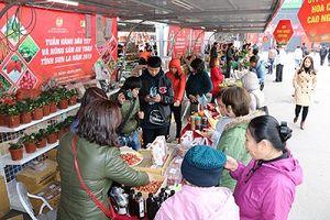 Tuần hàng Dâu tây lần đầu tiên được tổ chức tại Việt Nam