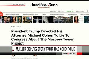 Truyền thông Mỹ: Tổng thống Trump chỉ đạo luật sư điều trần sai trước Quốc hội