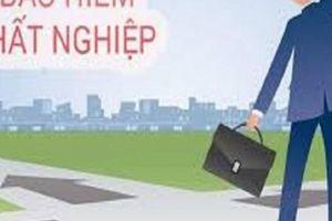 Đóng BHTN chưa được 1 năm có được hưởng trợ cấp thất nghiệp không?