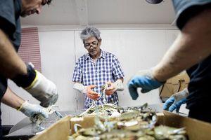 Ngư dân Việt ở Texas tìm chỗ đứng