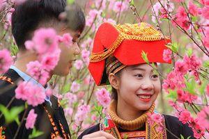 Sẵn sàng cho Lễ hội hoa Đào xứ Lạng Xuân Kỷ Hợi 2019