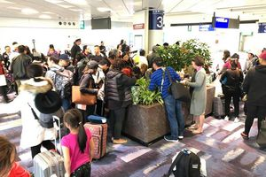 Nhiều khách Việt tố bị American Airlines bỏ rơi tại sân bay Hong Kong