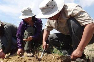 Đồ chơi trẻ em tinh xảo 2 triệu năm trước ở Trung Quốc