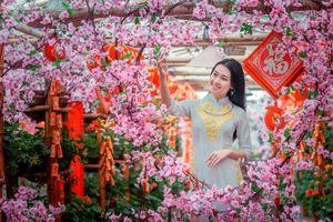 Hot girl Học viện Phụ nữ Việt Nam rạng ngời bên đào xuân