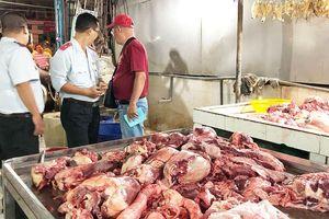 TP Hồ Chí Minh: Cảnh báo heo nhiễm bệnh 'qua mặt' các đội kiểm tra