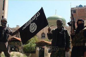 Nga ngăn chặn tổ chức huy động tài chính cho IS tại Syria