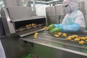 Thị trường xuất khẩu thịt gà của Việt Nam có hướng đi mới