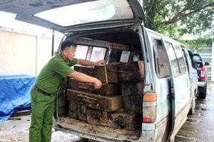 Tình trạng vận chuyển, buôn bán gỗ lậu dịp Tết