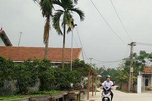 Vĩnh Phúc: Phấn đấu năm 2019 có 100% xã đạt chuẩn nông thôn mới