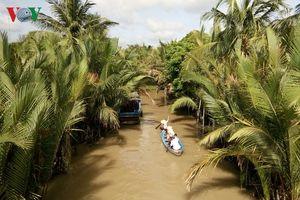 Xứ dừa Bến Tre phát triển du lịch thành ngành kinh tế mũi nhọn