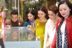 Sao Việt xúng xính dự triển lãm 'Báu vật đại ngàn' tại Hà Nội